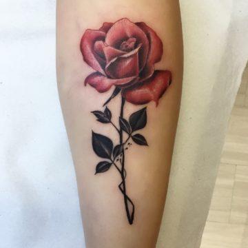 rosa tatuagem