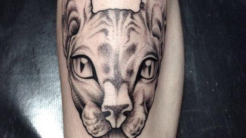 tatuagem-gato