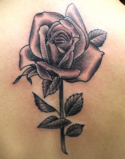 Rosa-tatuagem-2