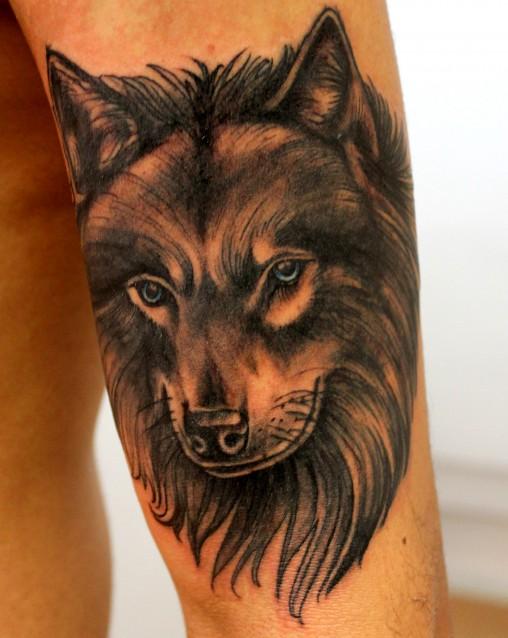 lobo-tatuagem